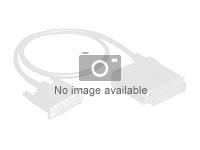 Lenovo - SAS ekstern kabel - 4 x Mini SAS HD (SFF-8644) (hann) til 4 x Mini SAS HD (SFF-8644) (hann) - 0.6 m - for Storage V3700 V2 01DC669