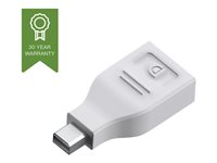 Vision Techconnect - DisplayPort-adapter - DisplayPort (hunn) til Mini DisplayPort (hann) - hvit TC-MDPDP